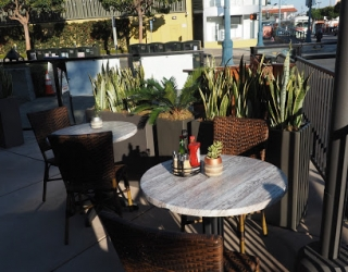 tables on patio with plants